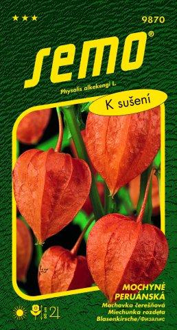 Mochyně peruánská semena